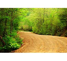 Spring Country Road Photographic Print