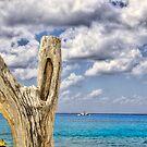 Peaceful Seas by Euge  Sabo