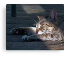Lazy Days of Spring Canvas Print