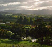 A View of Tasmania's Macquarie Plains by Odille Esmonde-Morgan