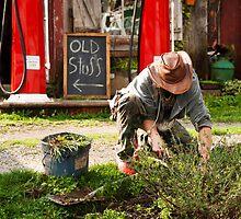 The Garden Artisan by Jeanne Sheridan