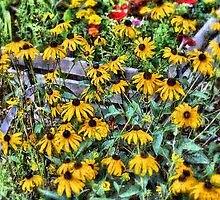 Flowers For Monday by Donnie Voelker