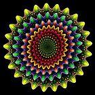 Flower Power 2 by Norma Jean Lipert