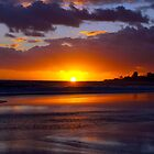Bilinga Beach Sunrise by Wayne  Nixon