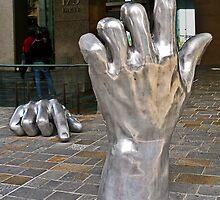 Hopoate Finger Must Stay by TonyCrehan
