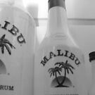 malibu line up by Perggals© - Stacey Turner