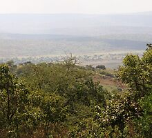 Akagera National Park by Ben Fatma Marc