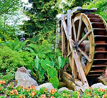 Garden's Wheel by Michael Rubin