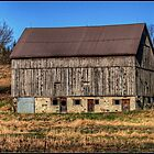 Painted barn effect by greyrose