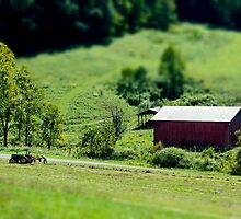 Miniature Countryscape by Greg Booher