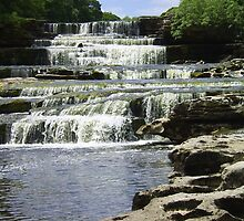 Aysgarth Lower Falls, Yorkshire by wiggyofipswich