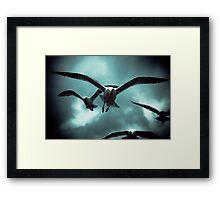 Sea Gulls - Renard Framed Print