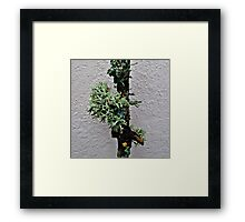 It's unfortunate, that you didn't believe in me. Framed Print