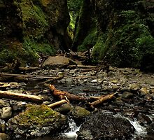 Oneonta Gorge ~ Part Two by artisandelimage