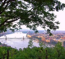 Budapest, Hungary, View from Gellert Hill Towards North by Anatoly Lerner