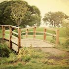 Rustic Country Bridge by Sylvia Coomes