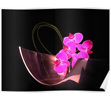 Orchid in Metal Valse Poster