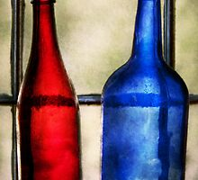 Collector - Bottles - Two empty wine bottles  by Mike  Savad