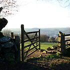 Okehampton - Gateway to Dartmoor by jonshort58