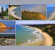 Sandringham collage 2 - Victoria - Australia by bayside2