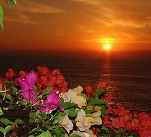 Springtide's Sunset In Red - Puesta Del Sol Rojo En La Primavera by Bernhard Matejka