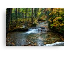 Autumn Splash Canvas Print