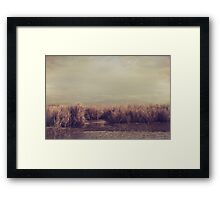 It Lives, It Grows, It Comes, It Goes Framed Print