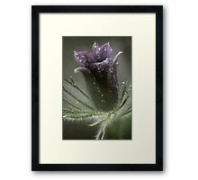 A cold rainy day Framed Print