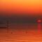 July Avatar Challenge - World Wide Sunsets