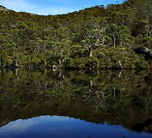 Mirror Mirror on the Lake_Cradle Mountain_Tassie by Sharon Kavanagh