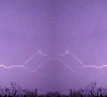 March 19 & 20 2012 Lightning Art 30 by dge357