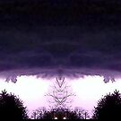 March 19 &amp; 20 2012 Lightning Art 52 by dge357