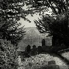 The Churchyard by EvilTwin