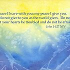 Ocean Waves and True Peace - John 14:27 by Diane Hall