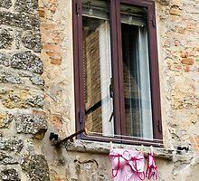 pink washing by Anne Scantlebury