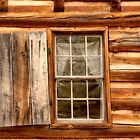 Window to the Past  by Karen Peron