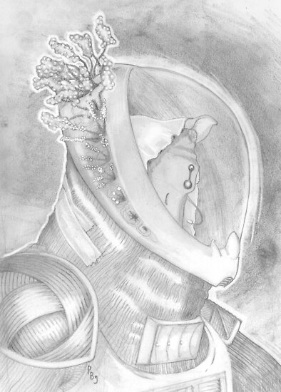 The Interrupted Alien by Pete Janes