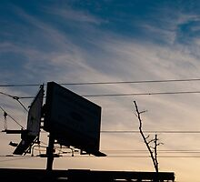 Billlboards On West Side Of Spadina North Of Queen by Gary Chapple