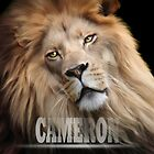 Cameron by Big Cat Rescue