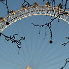 Half of the London Eye by karina5