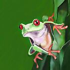 Tree frog by Deborah Vicino