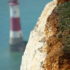 Lighthouse at Beachy Head by karina5