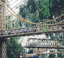Model Trains, Model Bridges, New York Botanical Garden Train Show, Bronx,New York by lenspiro