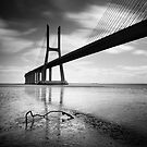 Vasco da Gama Bridge #01 by Nina Papiorek