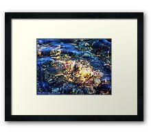 Penetrating the Depths (Hall Lake) Framed Print