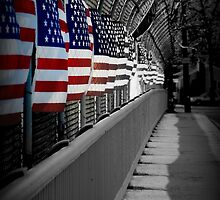 American Flags Over the Highway by heatherjstewart