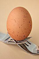 Eggcellent balance by Karen Tregoning