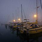 Misty Morning by Craig & Suzanne Pettigrew
