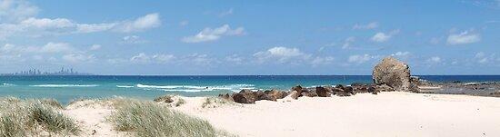 Currumbin rock Currumbin Beach  by Virginia McGowan