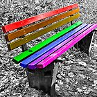 Rainbow Bench by Denise Abé